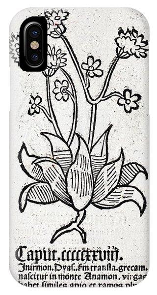 Herbal Plant Phone Case by Paul D Stewart
