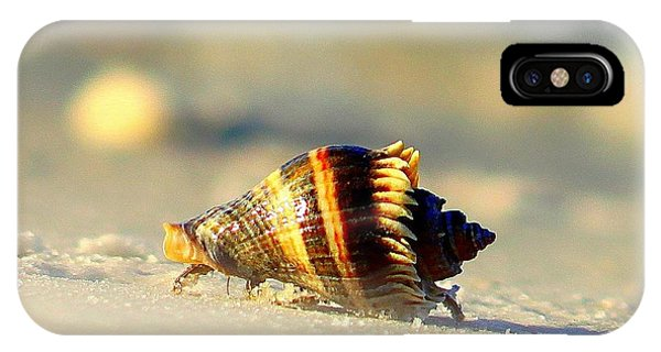 Hermit Crab  IPhone Case