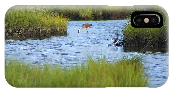 Tidal Marsh iPhone Case - Heron In A Salt Marsh by Bill Cannon