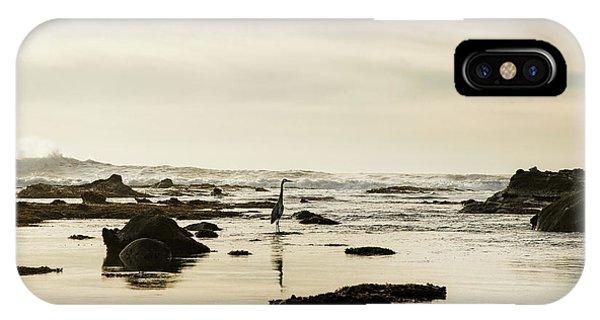 Half Moon Bay iPhone Case - Heron On The Beach, Mavericks Beach by Panoramic Images