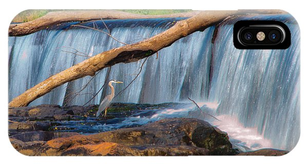 Heron On The Rocks IPhone Case