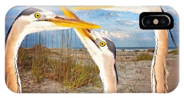 Avian iPhone Case - Herons by Betsy Knapp