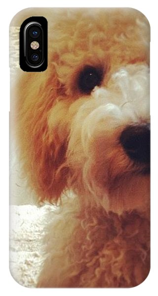 Love iPhone Case - Doodledog Georgie by Blenda Studio