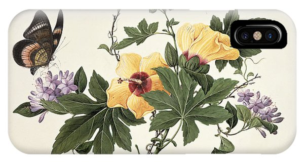 Hibiscus Flower iPhone Case - Hibiscus And Butterfly by Chinese School