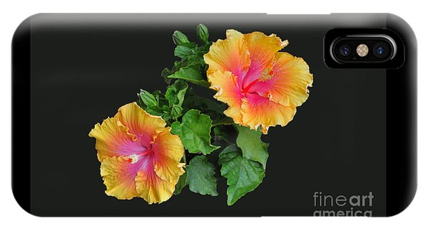 Hibiscus Duo IPhone Case