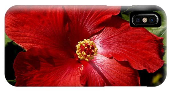 Hibiscus Landscape IPhone Case
