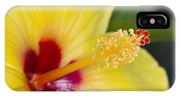 Hibiscus Macro IPhone Case