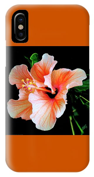 Hibiscus Spectacular IPhone Case