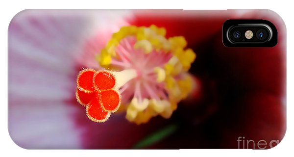 Hibiscus Stigma Pads IPhone Case