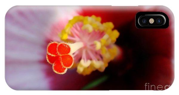 Hibiscus Stigma Pads IPhone Case