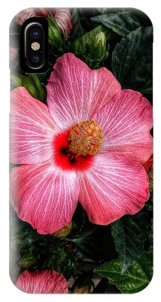 Hibiscus Sunset IPhone Case