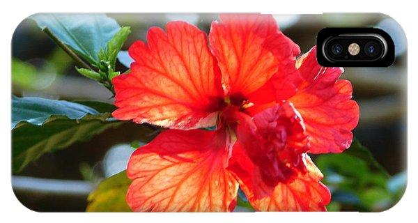Hibiscus Veins IPhone Case