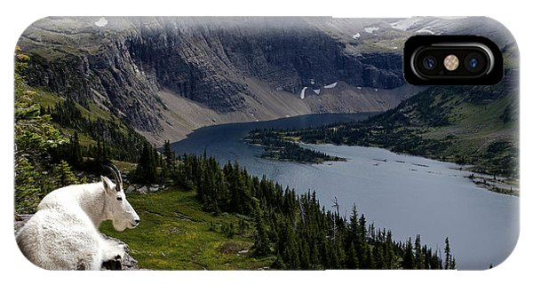 Hidden Lake Mountain Goat Phone Case by Robert Yone
