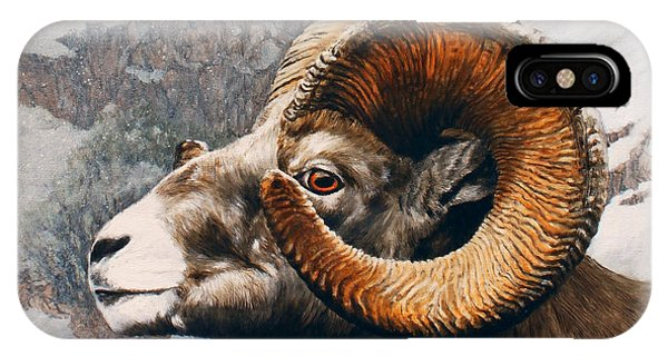 Rocky Mountain Bighorn Sheep iPhone Case - High Country Bighorn by Dreyer Wildlife Print Collections