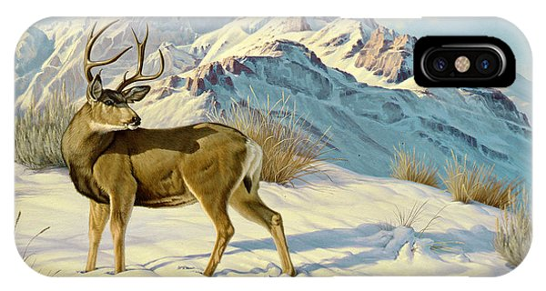 Buck iPhone Case - High Country Buck by Paul Krapf