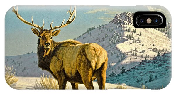 High Country Bull IPhone Case