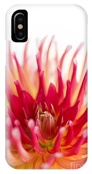 High Key Beauty IPhone Case