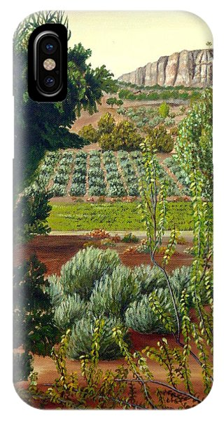 High Mountain Olive Trees  IPhone Case