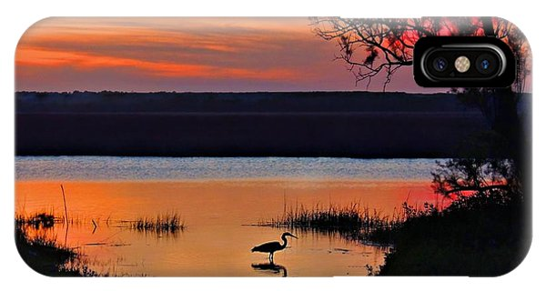 High Tide Heron IPhone Case