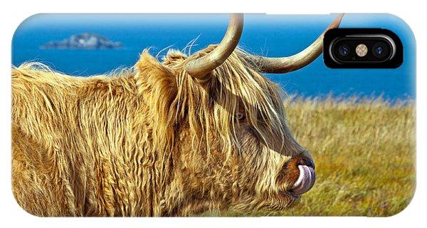 Highland Beauty IPhone Case