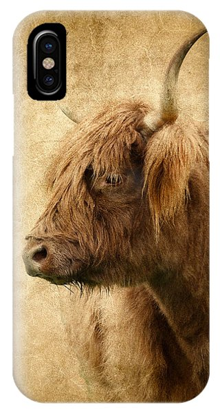Highland Bull IPhone Case