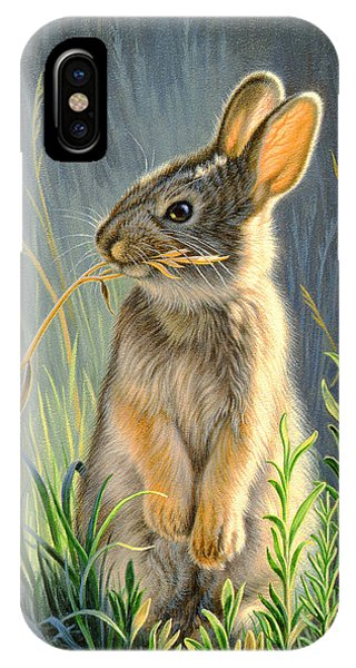 Rabbit iPhone Case - Highly Selective by Paul Krapf