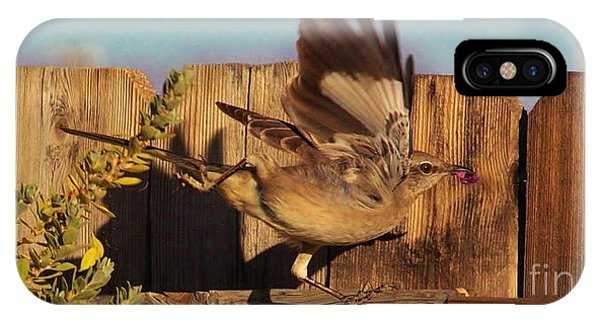 Hightail It Out Of There IPhone Case