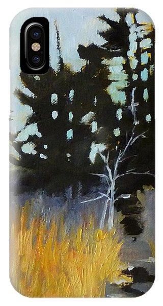 Gloomy iPhone Case - Hiking The Winter Trail by Nancy Merkle