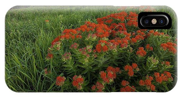 Hillside Bouquet  IPhone Case