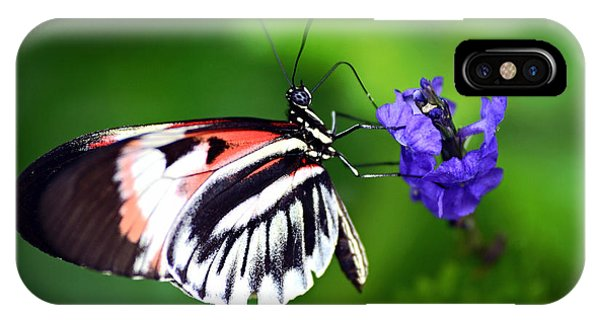 Hint Of Red Butterfly IPhone Case