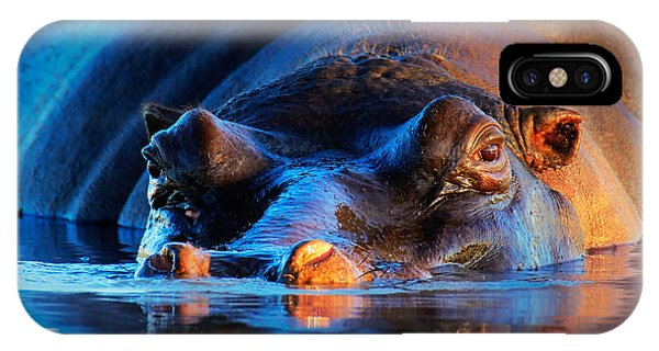 Angle iPhone X Case - Hippopotamus  At Sunset by Johan Swanepoel