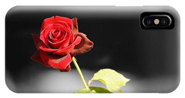 Hiroshima Rose IPhone Case