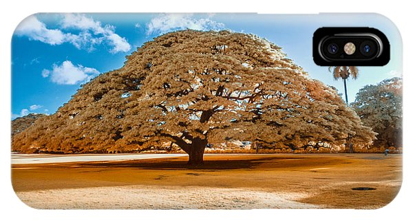 Hitachi Tree In Infrared IPhone Case