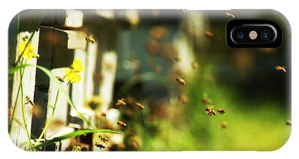 Hives And Bees IPhone Case