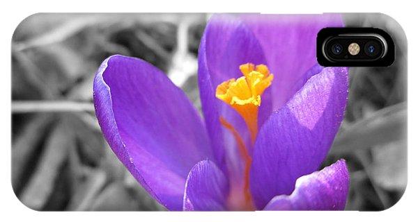Violet Flame iPhone Case - Hocus Crocus by Martin Howard