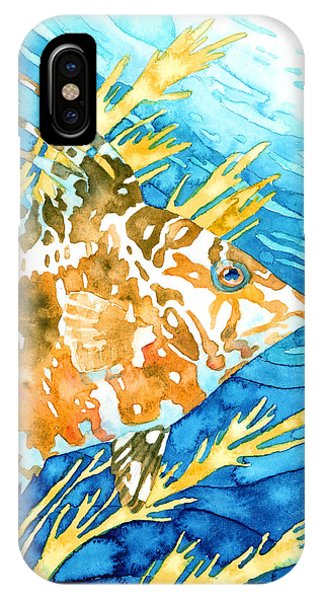 Hogfish Portrait IPhone Case