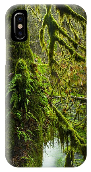 Hoh Rainforest 2 IPhone Case