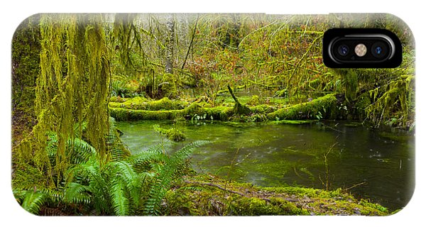 Hoh Rainforest 3 IPhone Case