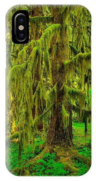 Hoh Rainforest Heavy Weight IPhone Case