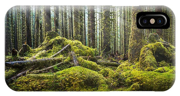 Hoh Rainforest Log Jam IPhone Case