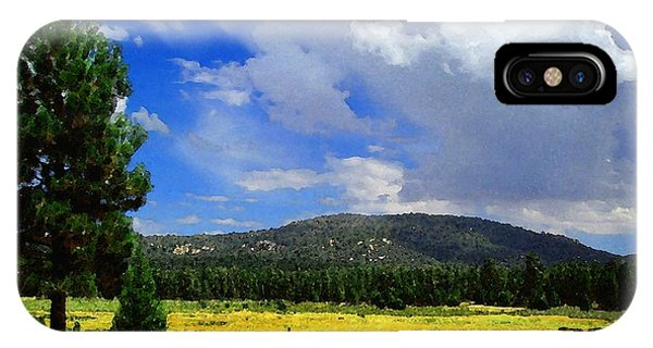 Holcomb Valley IPhone Case
