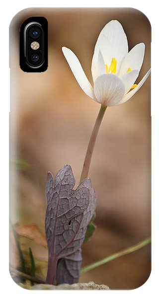Hold Me Tight.... Don't Let Go IPhone Case