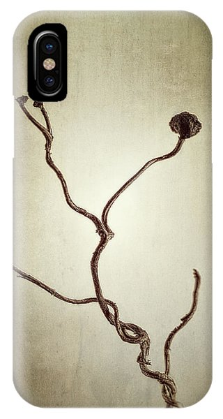 Holdfast Rootlet IPhone Case