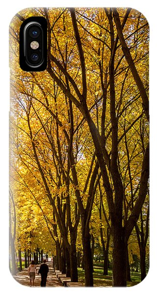 Holding Hands Under Tree Canopy IPhone Case