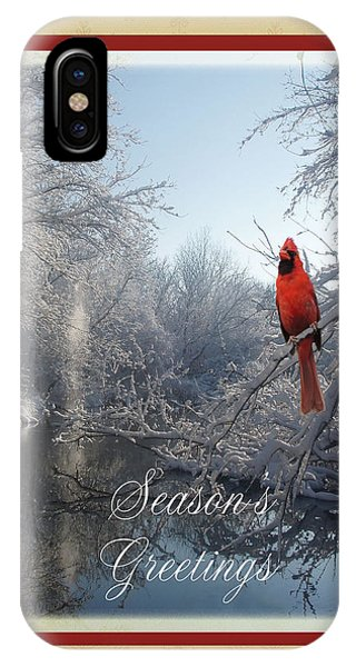 Holiday Season 2013 IPhone Case