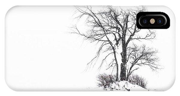 Holland Glenwood Tree IPhone Case