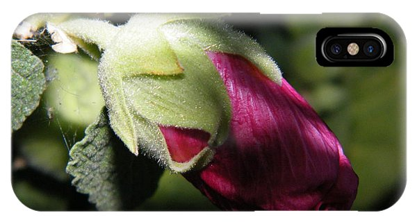 Hollyhock Shadows IPhone Case