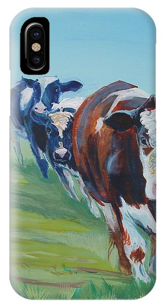Holstein Friesian Cows IPhone Case