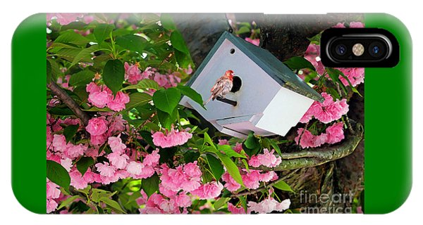 Home And Garden IPhone Case