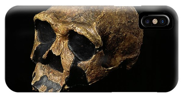 Er iPhone Case - Homo Ergaster Skull by Pascal Goetgheluck/science Photo Library